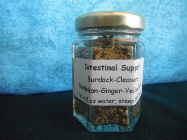 Intestinal Support